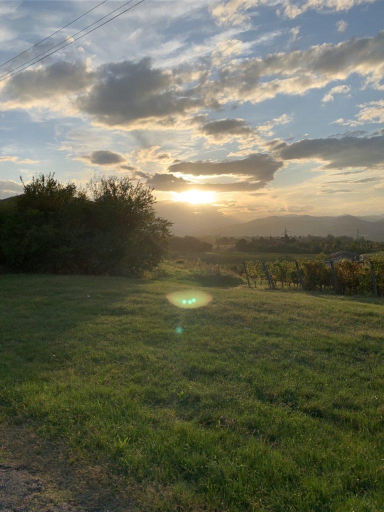 Capitolo 25:  Fiamme sui campi di Grano